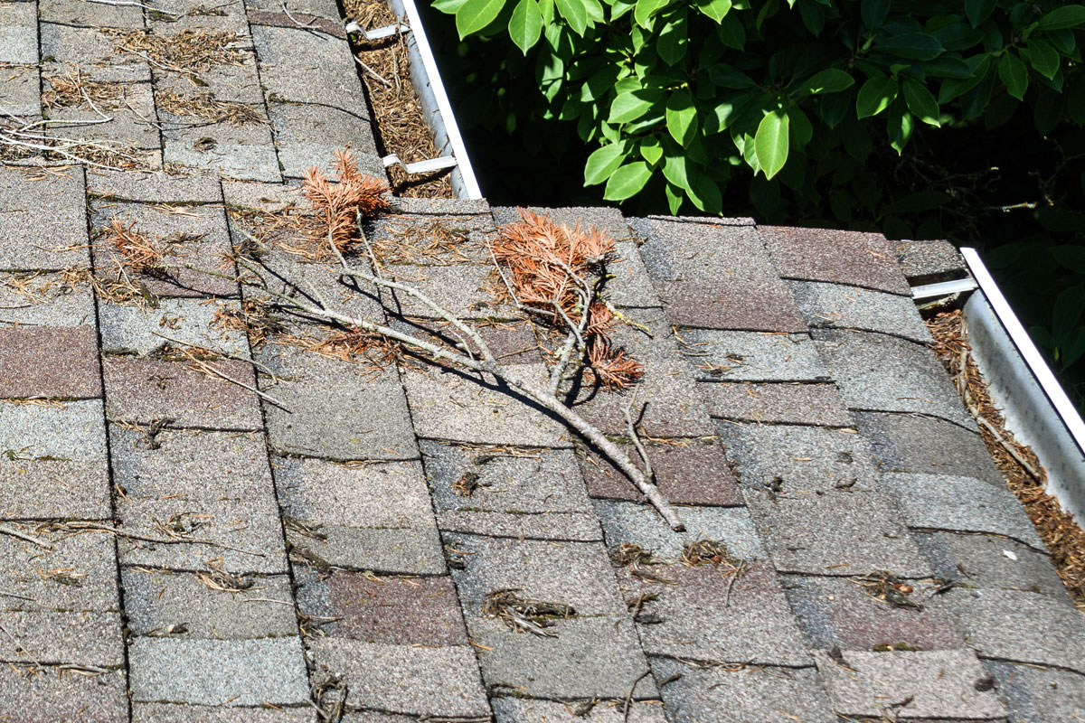 5 Tips For Maintaining Your Roof