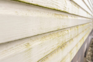 Century Home Improvements Siding Cleaning